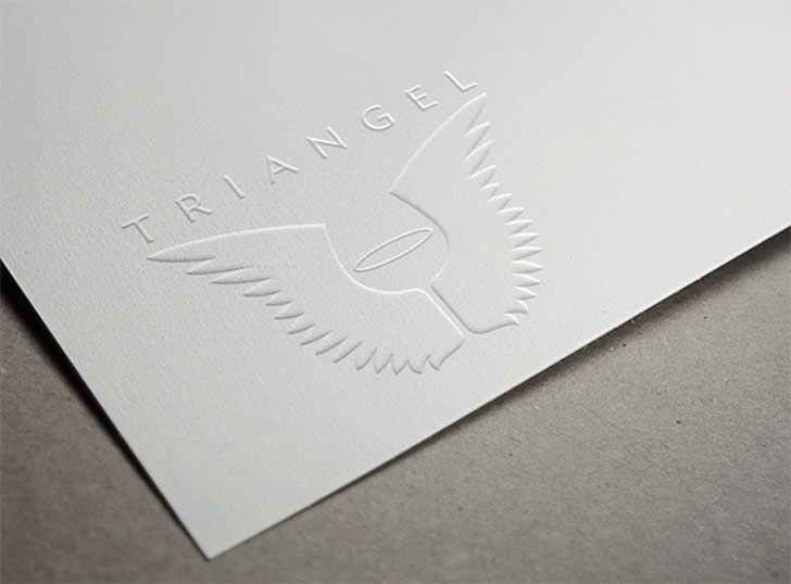 Public Marking - Triangel Branding Logo Mockup Application