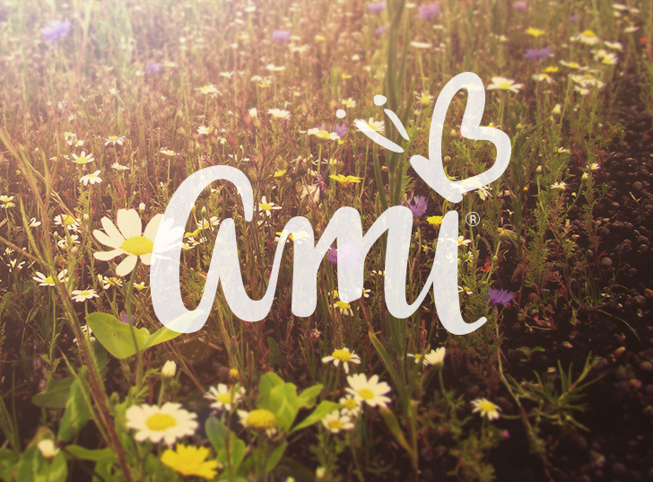 Public Marking Ami Logo Refinement - Cover
